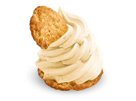 16H-Flavors-Snickerdoodle