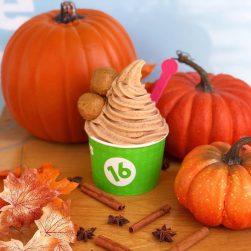 img 5- Pumpkin LTO